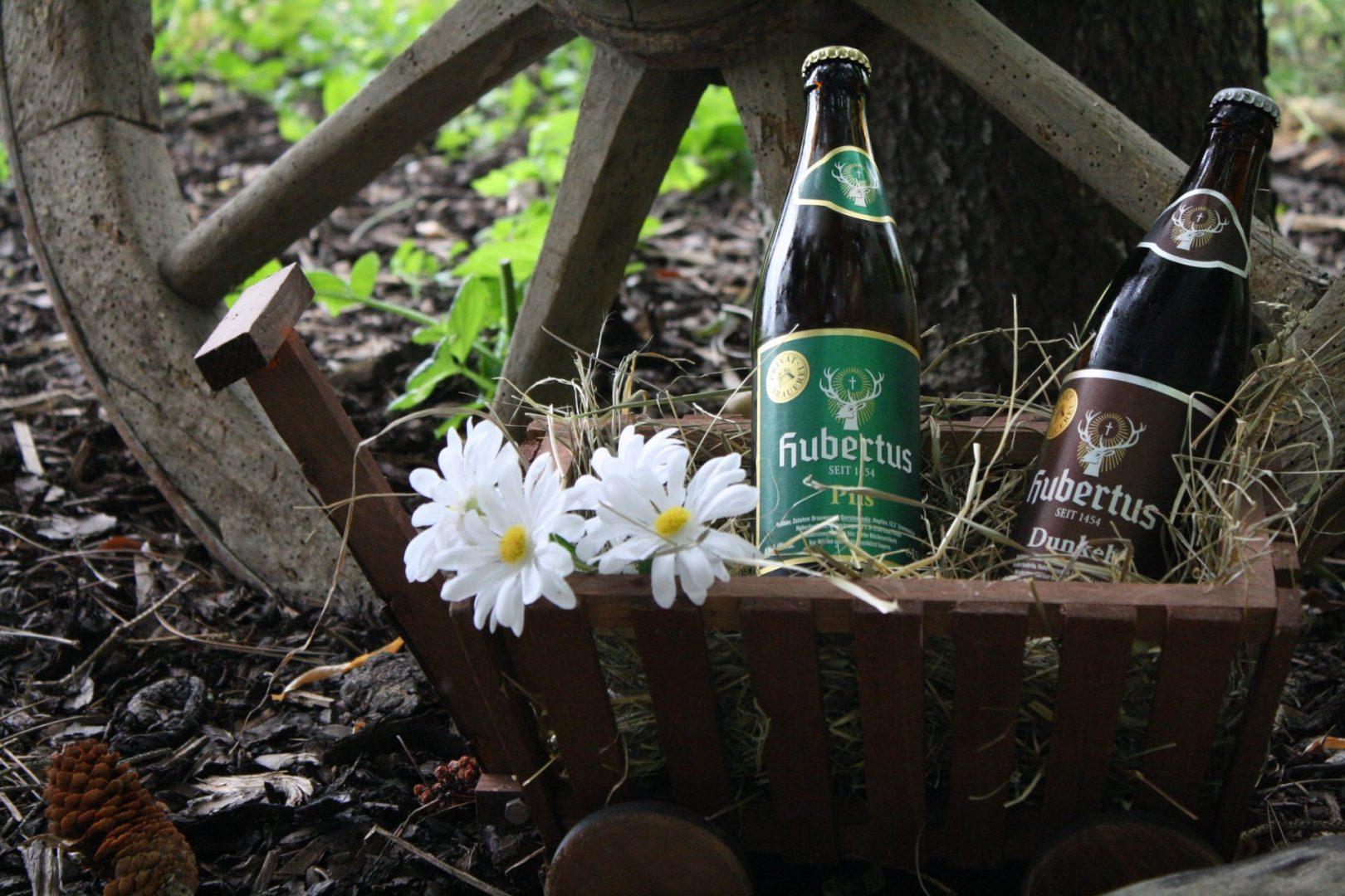 Bierflaschen im Korb